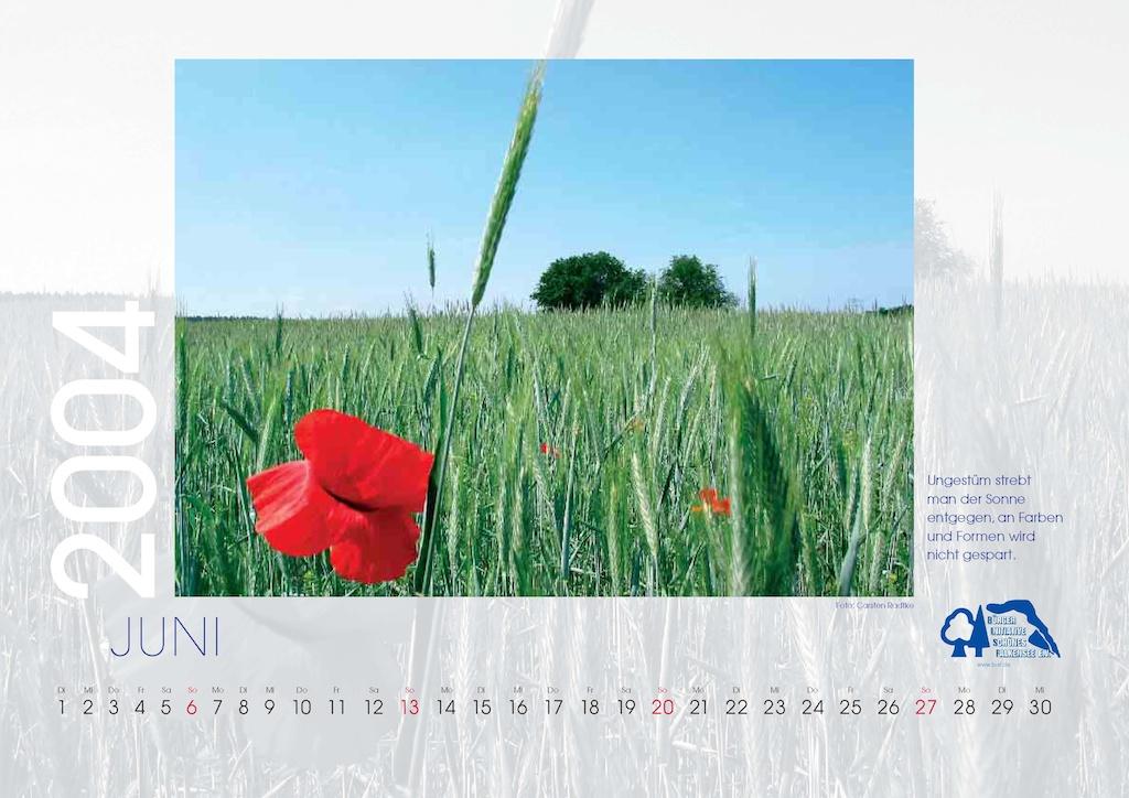 bisf_kalender_2004_06