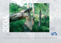 bisf_kalender_2004_07