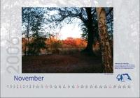 bisf_kalender_2006_11
