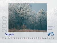 bisf_kalender_2009_02