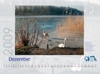 bisf_kalender_2009_12
