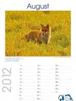 08_bisf_kalender_2012