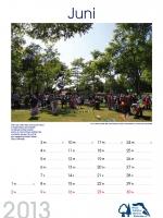 bisf_kalender_2013_06