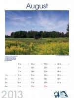 bisf_kalender_2013_08
