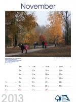 bisf_kalender_2013_11